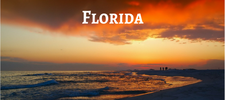 6 Top Literary Agents in Florida