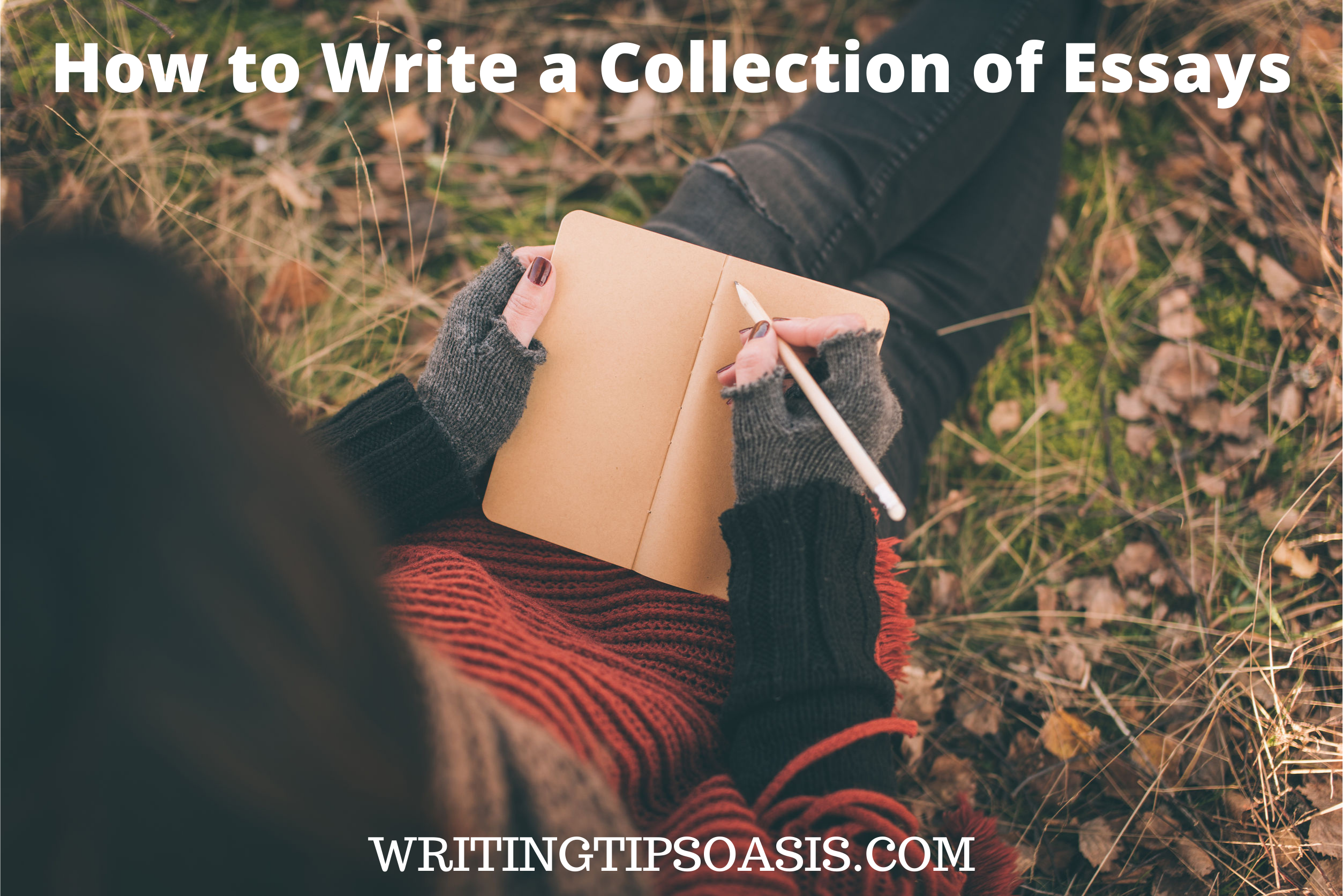 How to Write a Collection of Essays