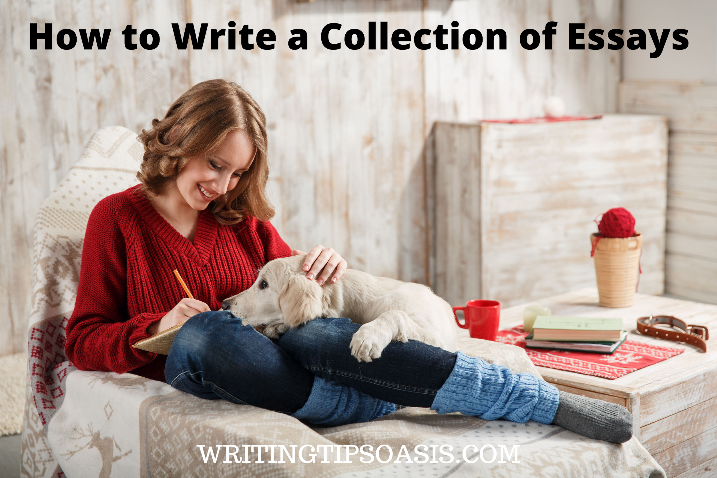 writing a collection of essays
